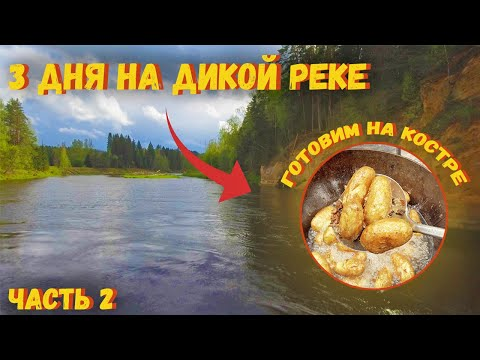 ЛУЧШИЙ отдых на дикой реке. Готовим в казане на костре. Шашлык в фольге на костре. 2 серия.