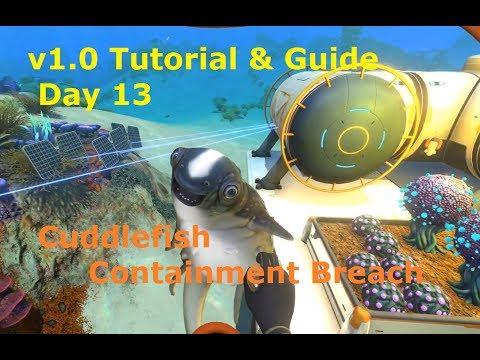 Subnautica v1.0 Tutorial Playthrough: Day 13 Cuddlefish & Containment Tank