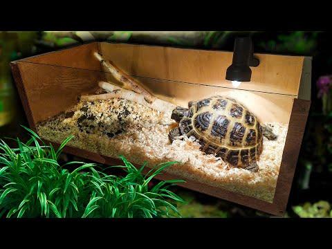 Домик для черепахи своими руками для сухопутной