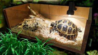 как сделать дом для сухопутной черепахи