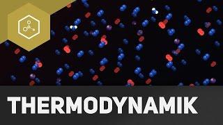 Thermodynamische Systeme