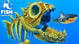 LE NOUVEAU POISSON SQUELETTE ARRIVE DANS LE JEU ! | Feed and Grow: Fish