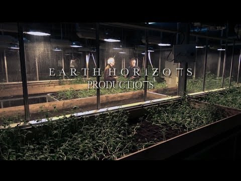 "Eco Eye Series 12 - Episode 6 - ""Future Farming"""