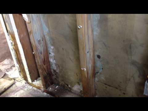 Dangerous Mold Growth After Hurricane Sandy