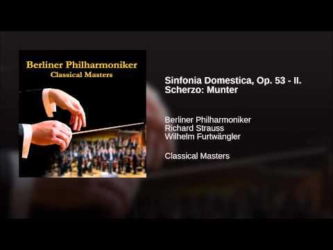 Sinfonia Domestica, Op. 53 - II. Scherzo: Munter