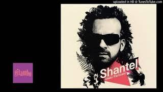 shantel - disko partizani - 03 - koupes - i'll smash glasses