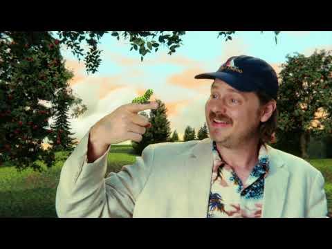 Tim Heidecker  - Property  (Official Video)
