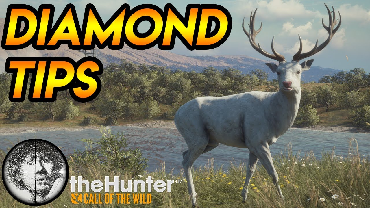 Two tips to get more diamonds on singleplayer! [theHunter: Call of the Wild 2020]