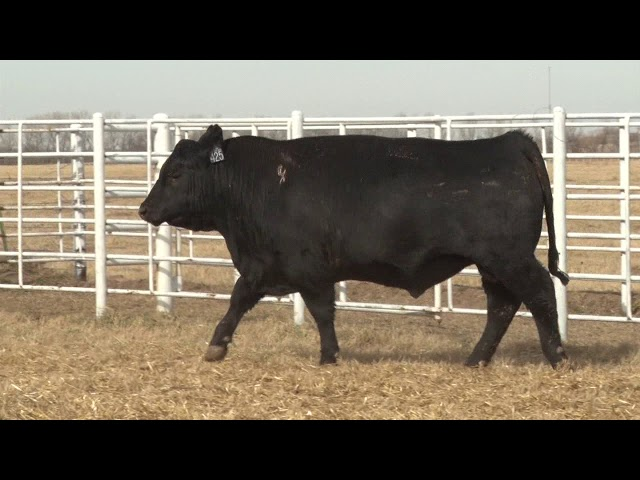 Express Ranches Lot 425