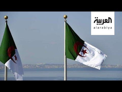 الجزائر لا تحب حبيبتي الجزائر  - نشر قبل 8 ساعة
