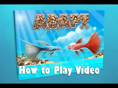 How To Play A.D.A.P.T.