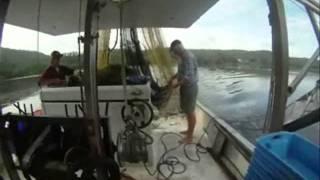 SeaNet NSW Hawkesbury River Estuary Prawn Trawl and BRD Workshop