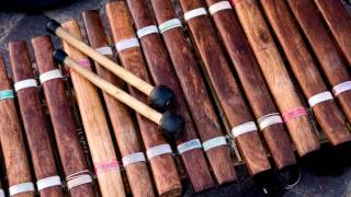 Xylophone Ringtone Free Music Ringtones For Android MP3 Download