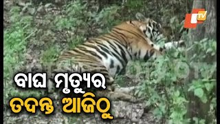 NTCA, WII team to visit State today to probe tiger Mahavir death