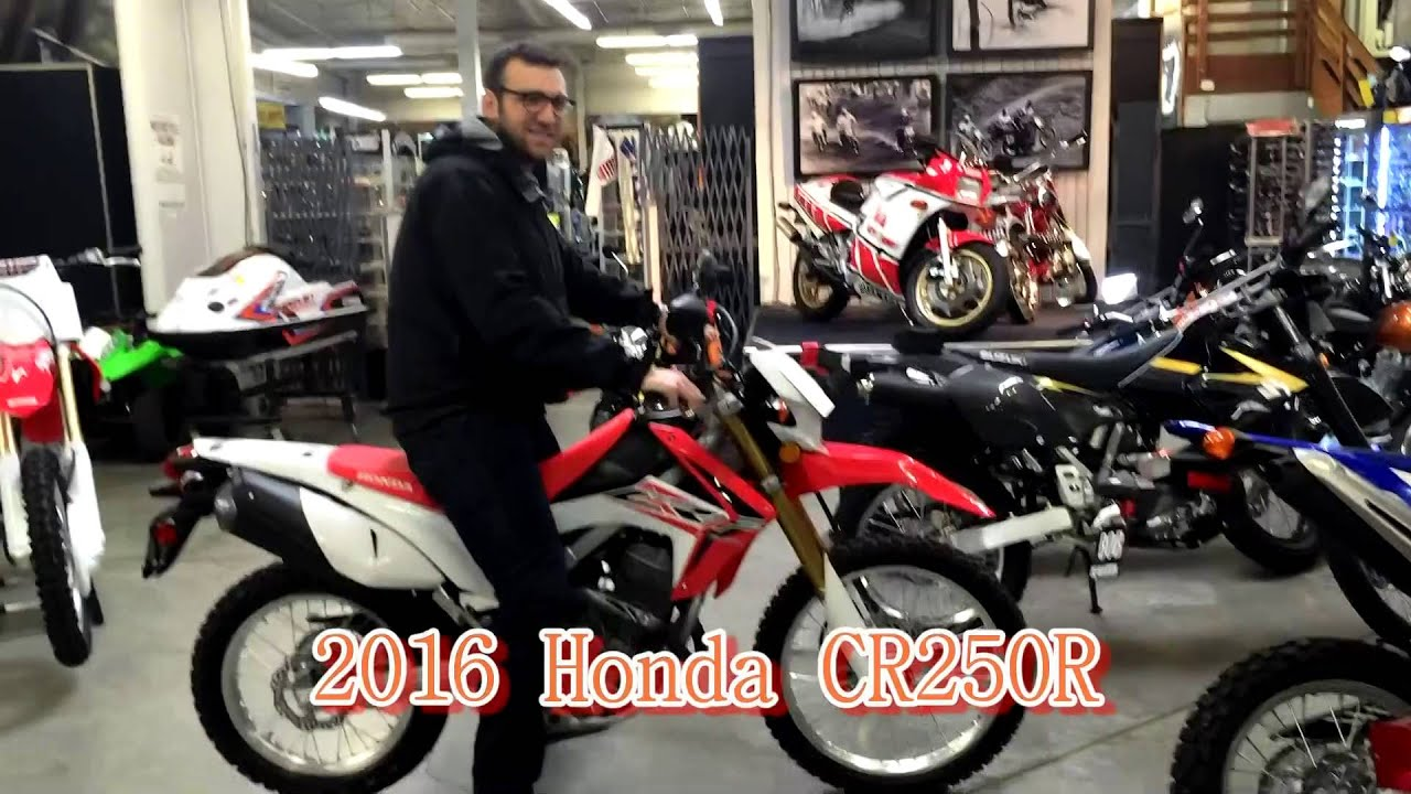 CR250R DR650 Vs KLR650 A Tall Riders Review
