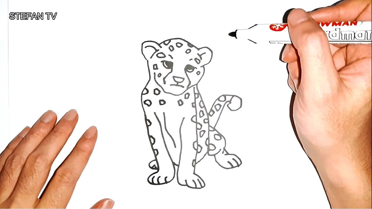 How to draw Cheetah Cute and Easy for kids | Cheetah ...