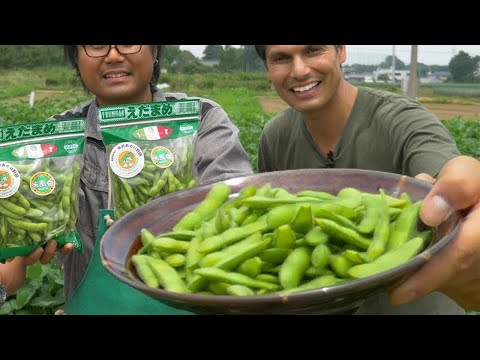 Edamame Farm | Japanese Superfood Snack Adventure ★ ONLY in JAPAN