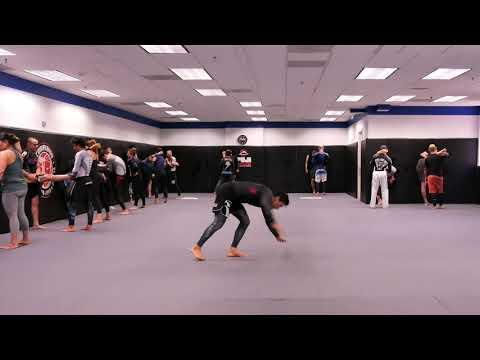 Capoeira Mobility For Jiu Jitsu By Cobrinha