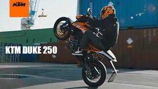 KTM Duke 250 | Official Video