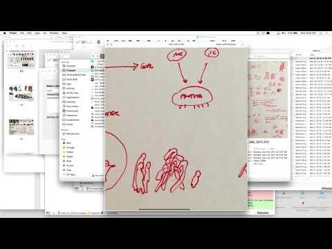 """ATC Lecture — Ian Cheng's """"new art, flag art, good art, portal art"""""""