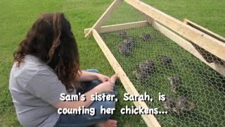 Fat Rabbit Farm.mov