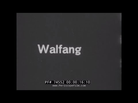 WHALING IN THE NORTH ATLANTIC 1930s GERMAN SILENT FILM  WHALES HARPOON 74552