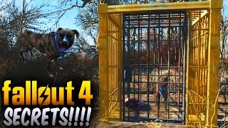 Fallout 4 Secrets - Secret Caged Dog That Leads You To a Secret Trader Fallout 4 Things To Know