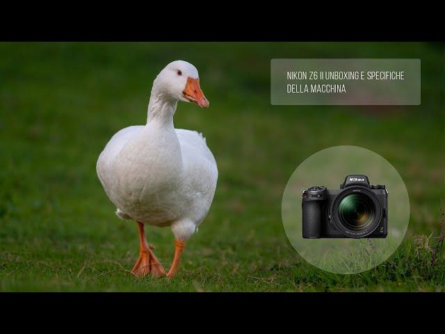 Nikon Z6 II: unboxing e specifiche della macchina