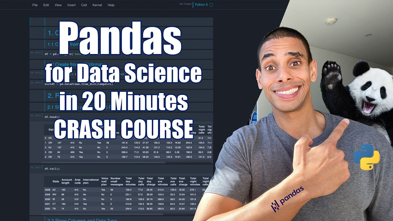 Pandas for Data Science in 20 Minutes | Python Crash Course
