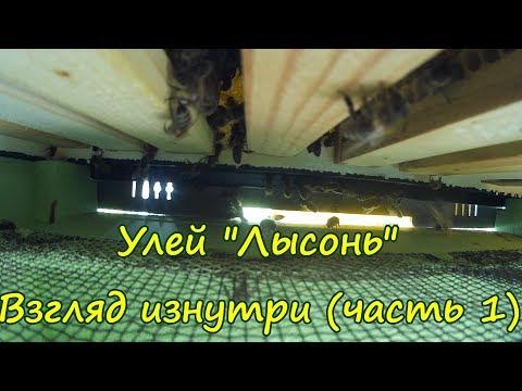 Женский оргазм видео — Nau-Tech