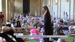 Insolite : un rassemblement de yoga pour la bonne cause
