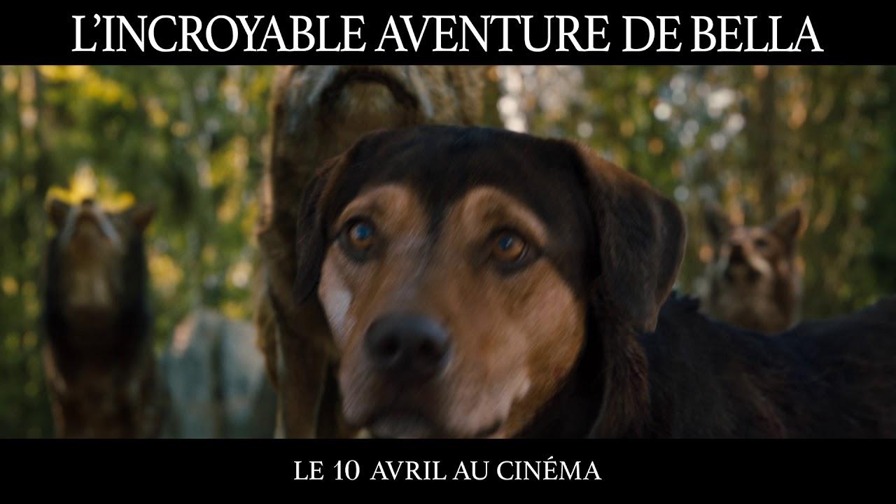 """L'Incroyable Aventure de Bella - TV SPOT """"Challenge"""" 20s"""