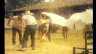 Mulino Bianco - spot 1980 - Vivere in una Valle Felice: le Fette Biscottate