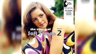 The Sound of Soft Tempo - vol. 2 (official) screenshot 2