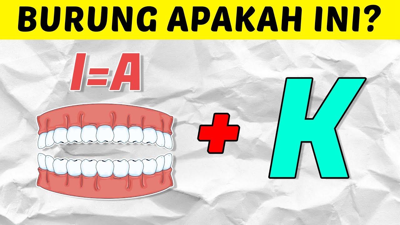 KAMU PUNYA BURUNG? COBA JAWAB TEBAK GAMBAR JENIS BURUNG DI INDONESIA PALING SUSAH INI