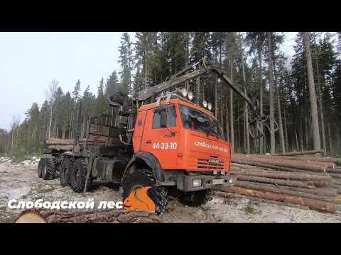 """Лесозаготовка """"Слободской лес"""" 2020г."""
