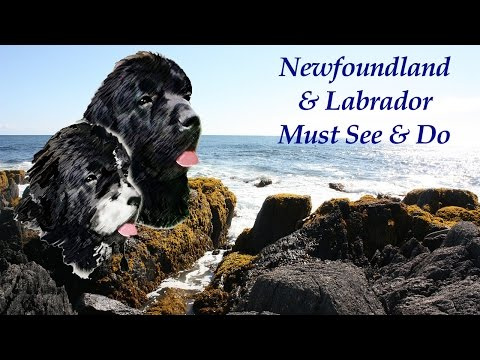 Newfoundland and Labrador, Must See & Do