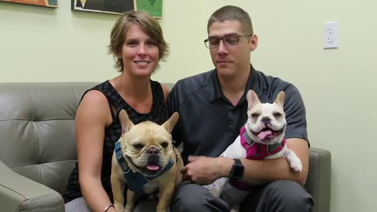 Testimonials - Animal Oasis Veterinary Hospital in Naples Florida