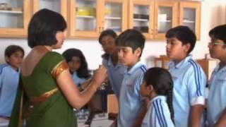 Treamis World School, Electronic City, Bangalore ,India