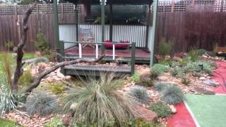 The Making Of An Australian Native Backyard With Pond Part 2