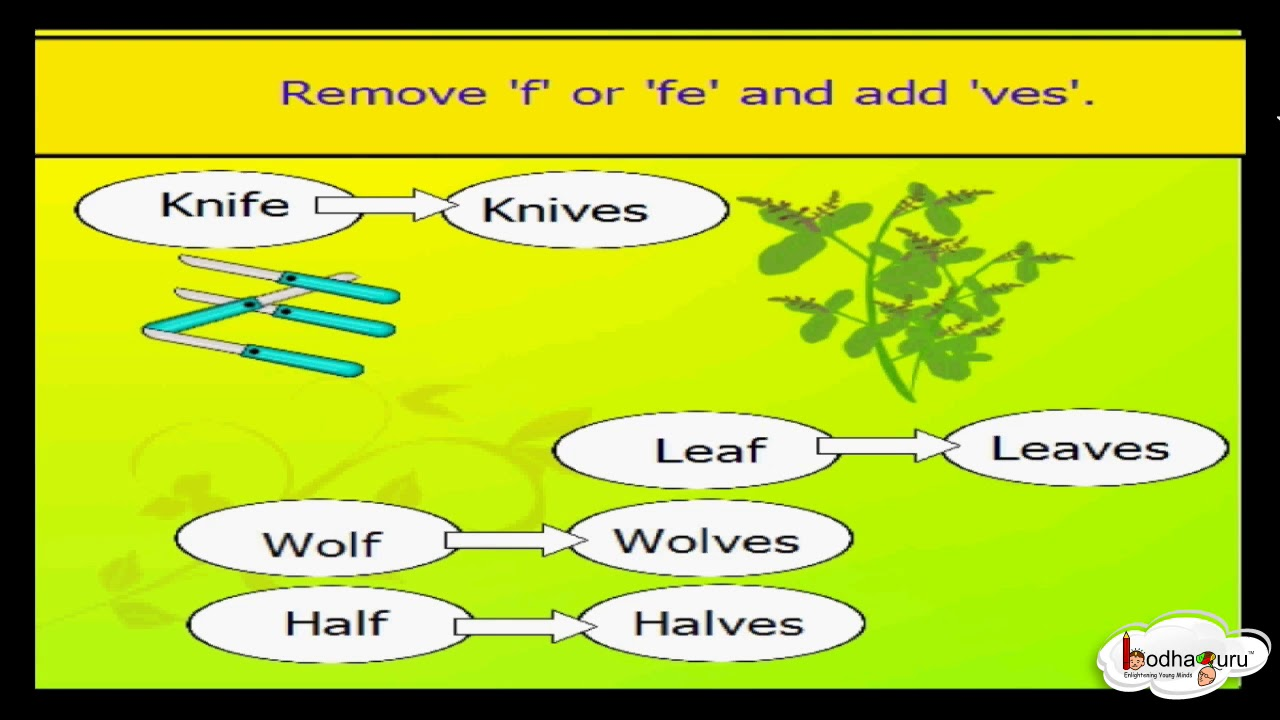 let s learn singular and plural nouns grammar for kids english