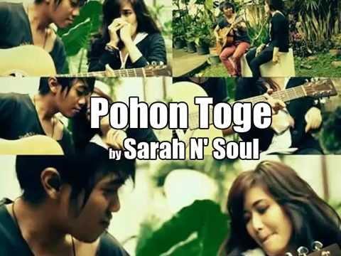 """""""Pohon Toge"""" By Sarah N' Soul"""