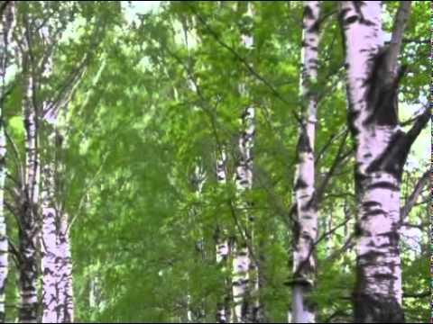 Клип Стас Михайлов - Мы теперь уходим понемногу