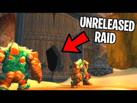 After 15 Years This WoW Raid Was Never Released