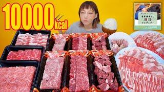【大食い】しゃぶしゃぶ,焼きしゃぶ,焼肉を贅沢食い!高級黒毛和牛と南国スイート豚が美味しすぎ[畜産農家応援]アサヒ贅沢搾りプラス期間限定レモンとはちみつ[4kg] 10000kcal【木下ゆうか】