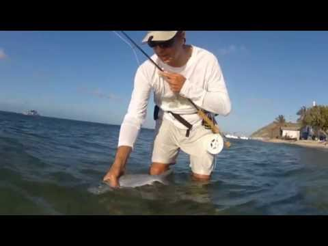 Los roques L'isola di Gran Roque Pesca con mosca Fly fishing Tourism bonefish Pipam