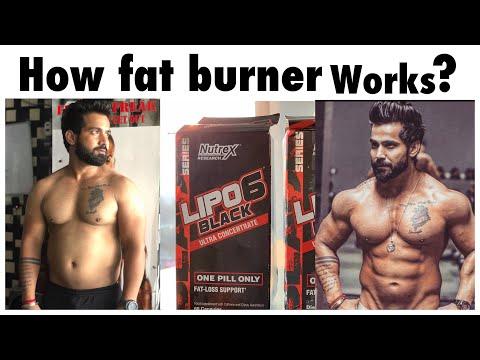 How Fat Burner Works | How To Use Fat Burner | Advantages & Disadvantages | Rajveer Shishodia
