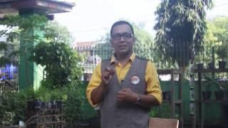 RAGAM  PENDIDIKAN  JAWA TIMUR : SISWA MENGAJAR ,SMPN 1 MEJAYAN  MADIUN  (2)