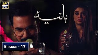 Hania Episode 17 22nd June 2019 ARY Digital