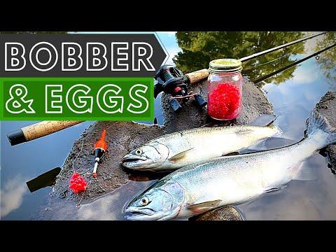 Bobber And Eggs For Salmon 101 | BOBBER DOWNS | 4K